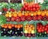 organic-vegetables-1